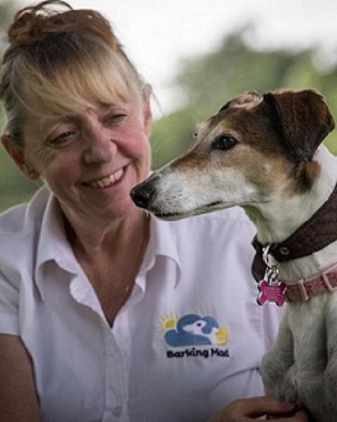 Sheila Hughes Barking Mad Dog Sitting Home Boarding East Worcester 1