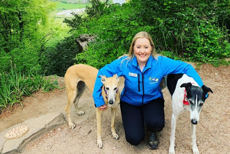 Dog sitting professional Lucy Callaway Of Barking Mad Lydney is loving her new career working with dogs